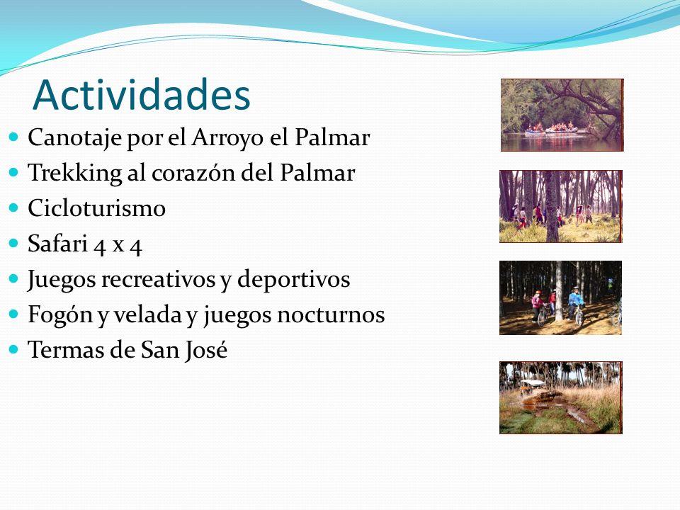 Actividades Canotaje por el Arroyo el Palmar Trekking al corazón del Palmar Cicloturismo Safari 4 x 4 Juegos recreativos y deportivos Fogón y velada y