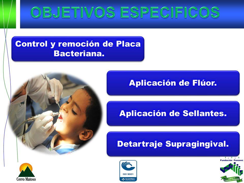 Las toxinas producidas por las bacterias en la placa inflaman las encías y provocando la infección.