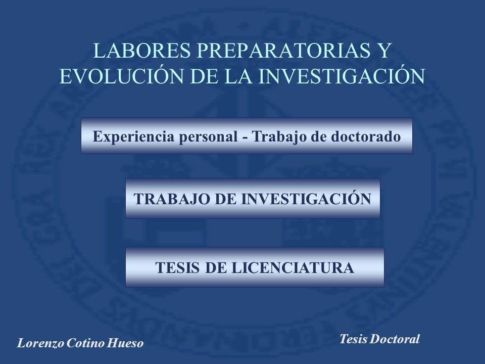 Lorenzo Cotino Hueso Tesis Doctoral LABORES PREPARATORIAS Y EVOLUCIÓN DE LA INVESTIGACIÓN Experiencia personal - Trabajo de doctorado TRABAJO DE INVESTIGACIÓN TESIS DE LICENCIATURA