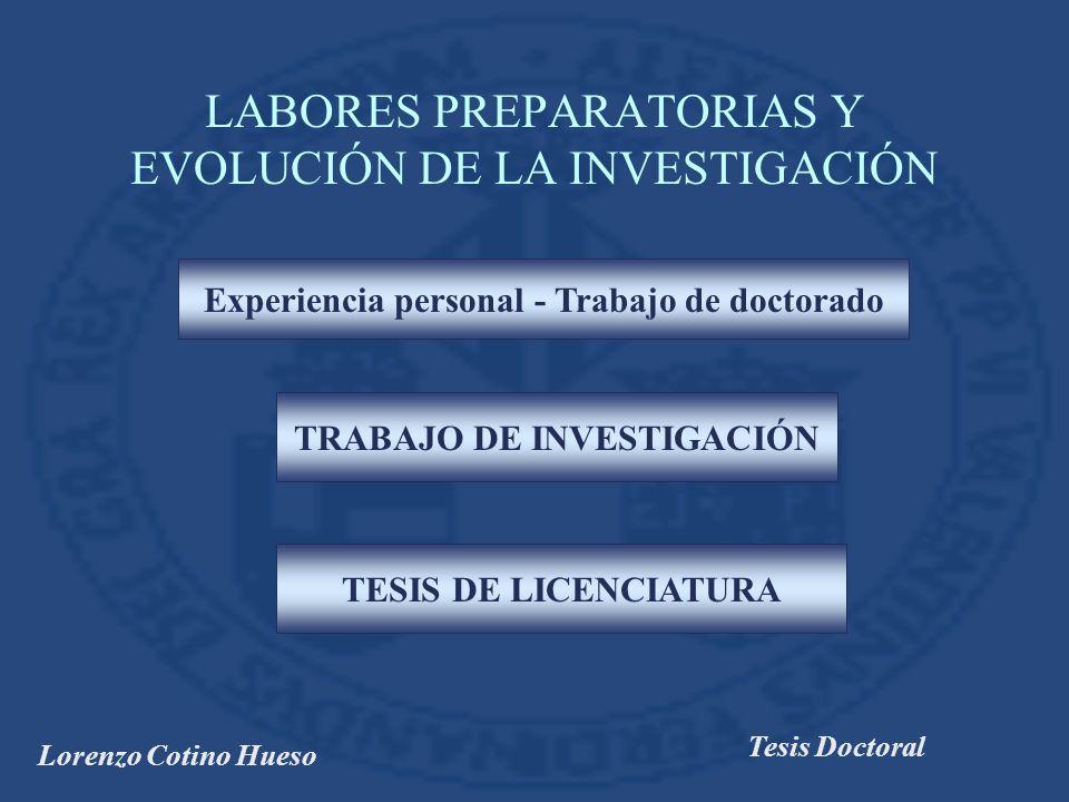Lorenzo Cotino Hueso Tesis Doctoral CONCLUSIÓN