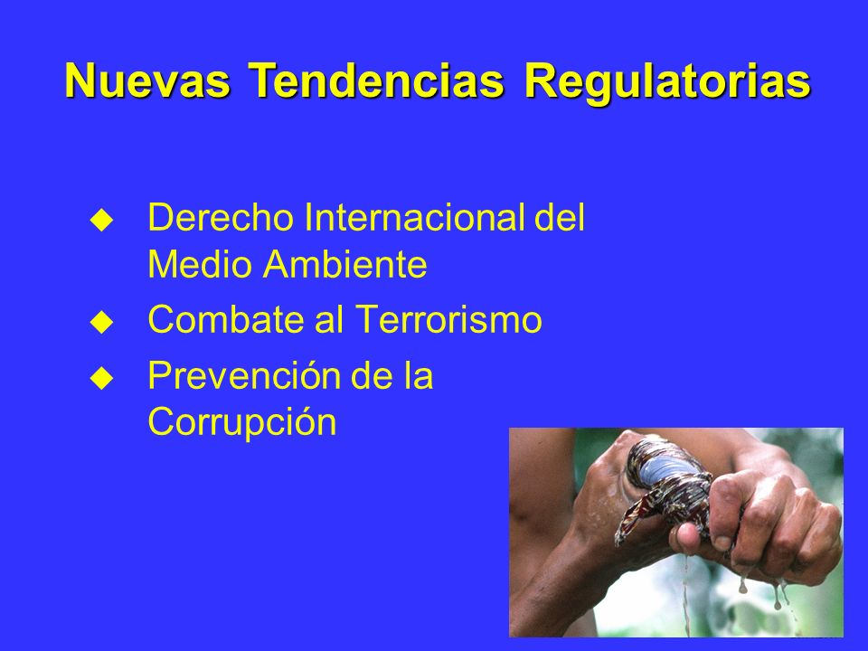 Daniel Soto 28.03.2007 u u Derecho Internacional del Medio Ambiente u u Combate al Terrorismo u u Prevención de la Corrupción Nuevas Tendencias Regula
