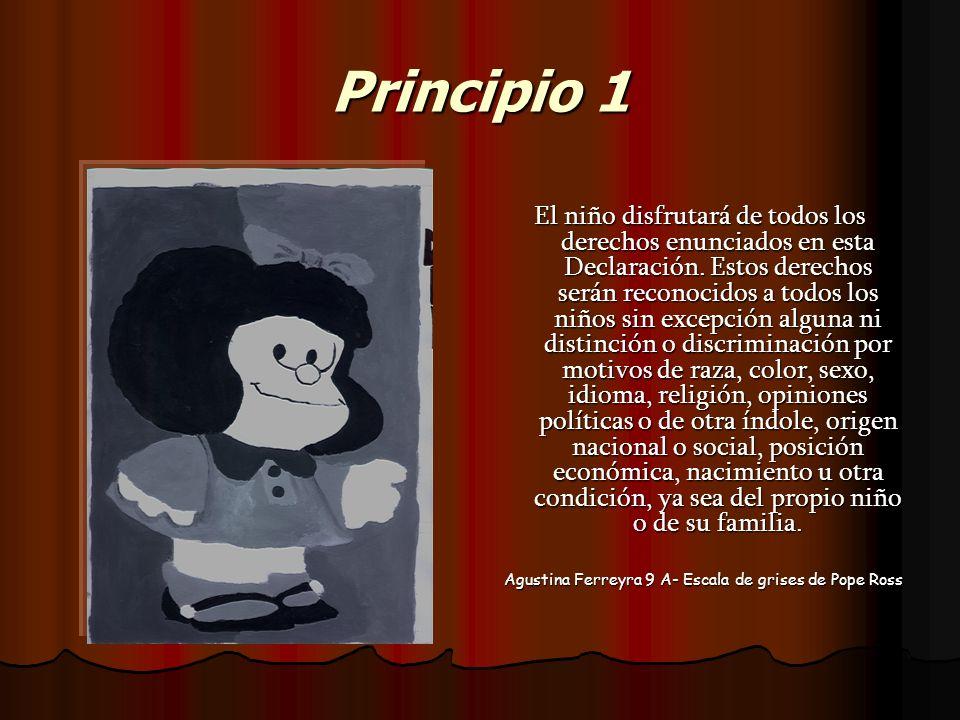 Principio 1 El niño disfrutará de todos los derechos enunciados en esta Declaración. Estos derechos serán reconocidos a todos los niños sin excepción