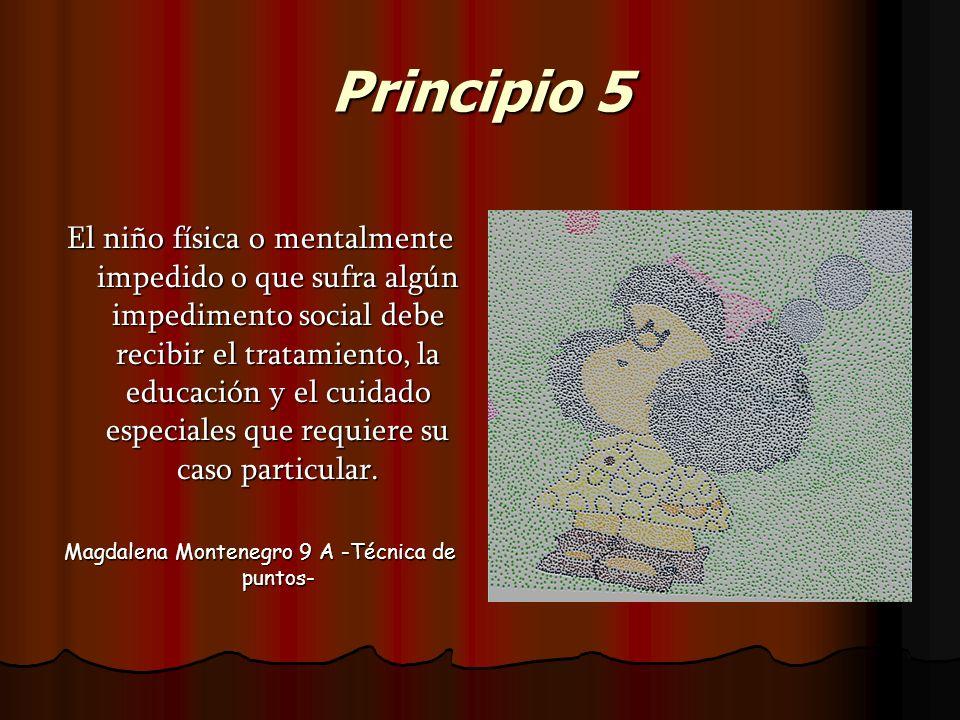 Principio 5 El niño física o mentalmente impedido o que sufra algún impedimento social debe recibir el tratamiento, la educación y el cuidado especial