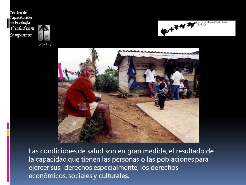Centro de Capacitación en Ecología Y Salud para Campesinos Las condiciones de salud son en gran medida, el resultado de la capacidad que tienen las pe