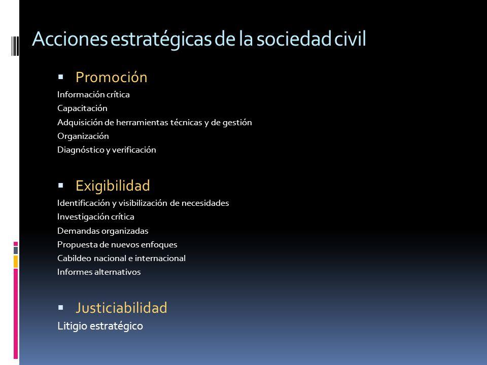 Acciones estratégicas de la sociedad civil Promoción Información crítica Capacitación Adquisición de herramientas técnicas y de gestión Organización Diagnóstico y verificación Exigibilidad Identificación y visibilización de necesidades Investigación crítica Demandas organizadas Propuesta de nuevos enfoques Cabildeo nacional e internacional Informes alternativos Justiciabilidad Litigio estratégico