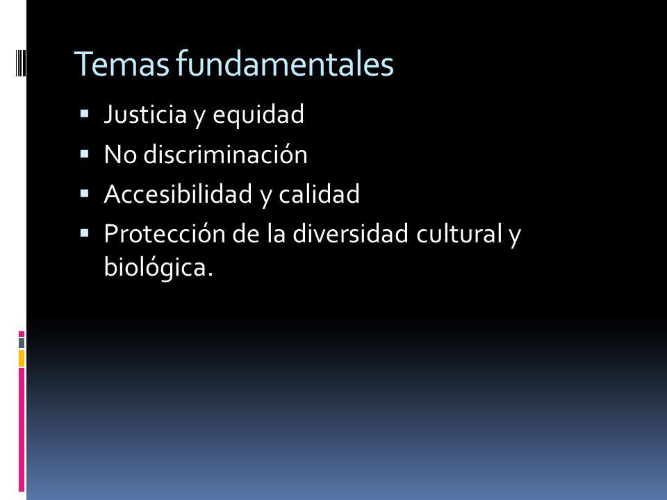 Temas fundamentales Justicia y equidad No discriminación Accesibilidad y calidad Protección de la diversidad cultural y biológica.