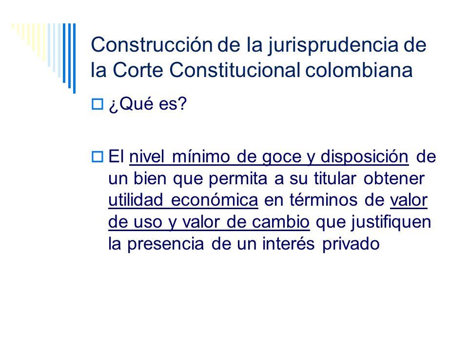 Construcción de la jurisprudencia de la Corte Constitucional colombiana ¿Qué es? El nivel mínimo de goce y disposición de un bien que permita a su tit