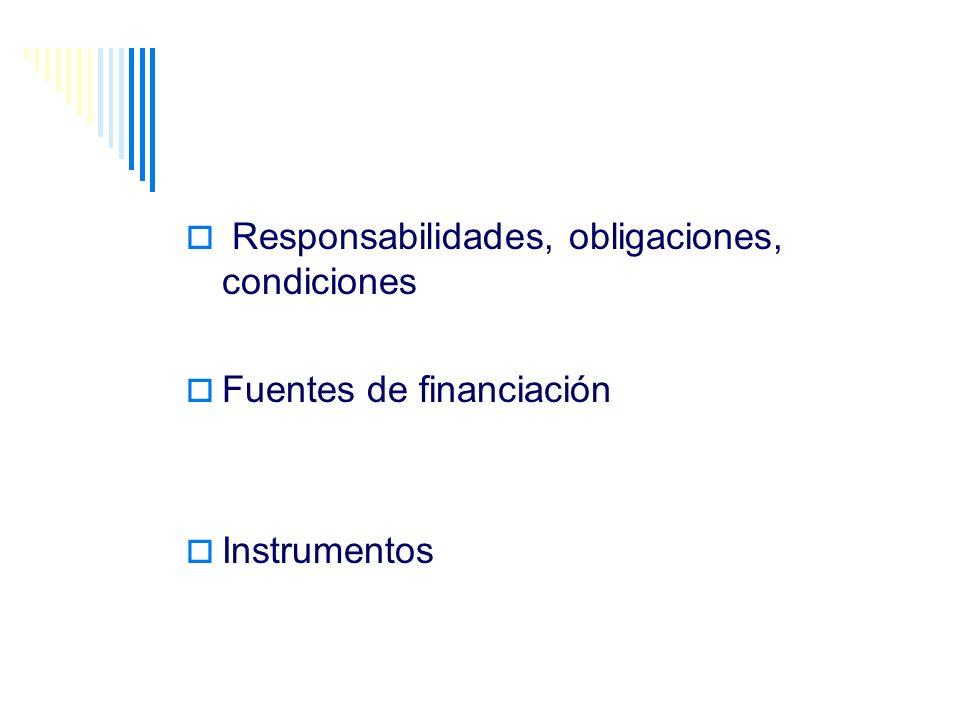 Responsabilidades, obligaciones, condiciones Fuentes de financiación Instrumentos