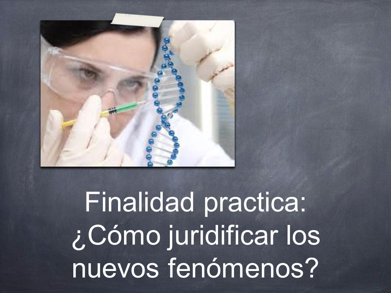 Finalidad practica: ¿Cómo juridificar los nuevos fenómenos?