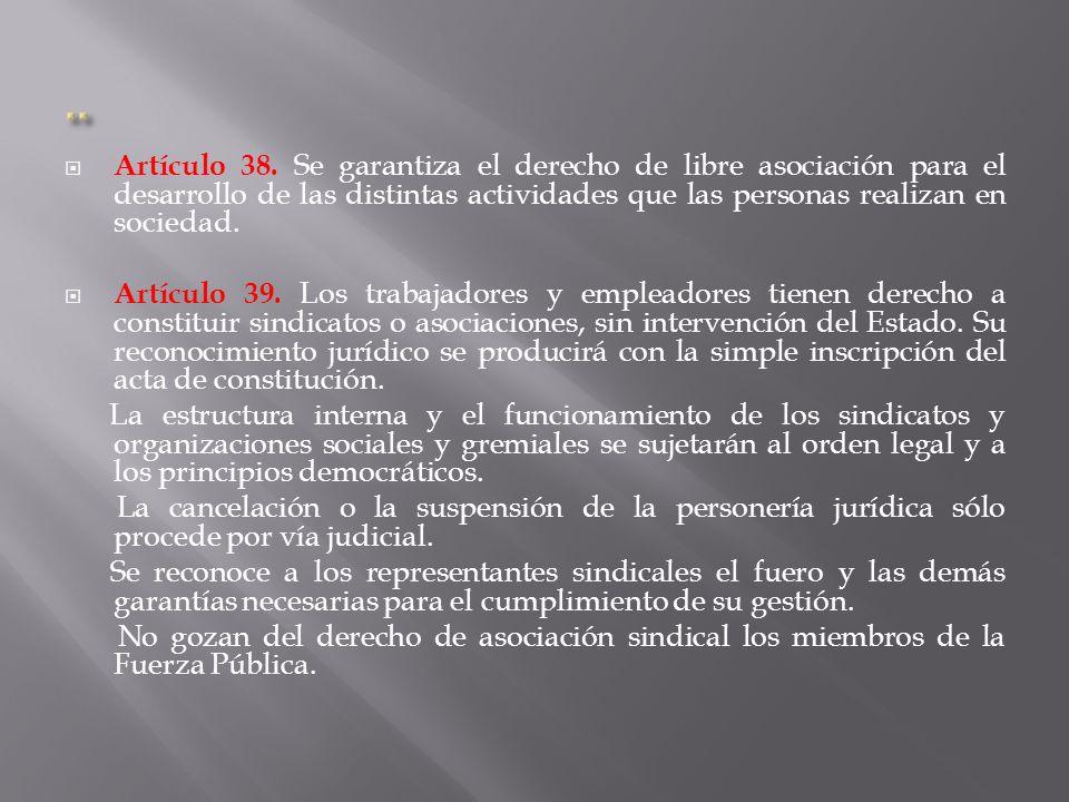 Artículo 38.