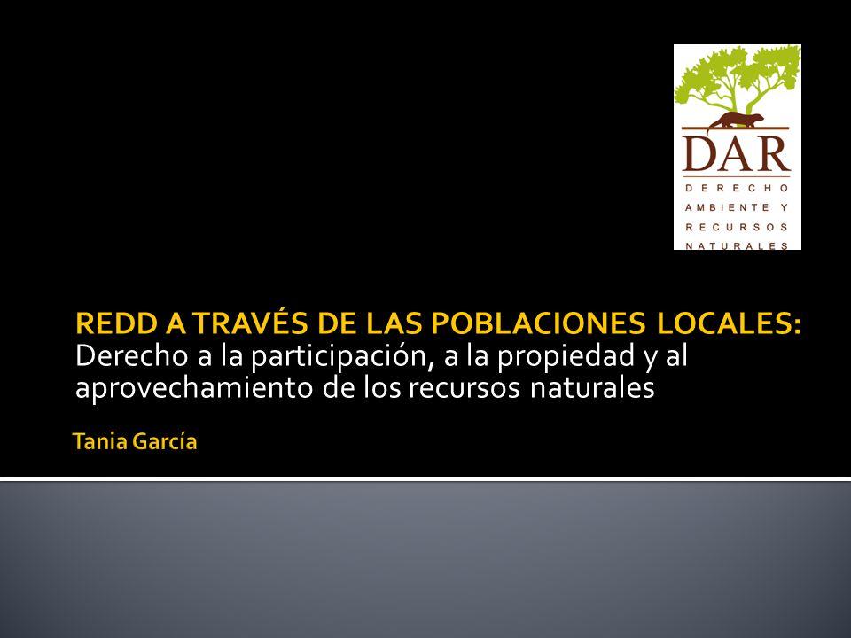 REDD A TRAVÉS DE LAS POBLACIONES LOCALES: Derecho a la participación, a la propiedad y al aprovechamiento de los recursos naturales