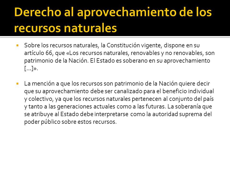 Sobre los recursos naturales, la Constitución vigente, dispone en su artículo 66, que «Los recursos naturales, renovables y no renovables, son patrimonio de la Nación.