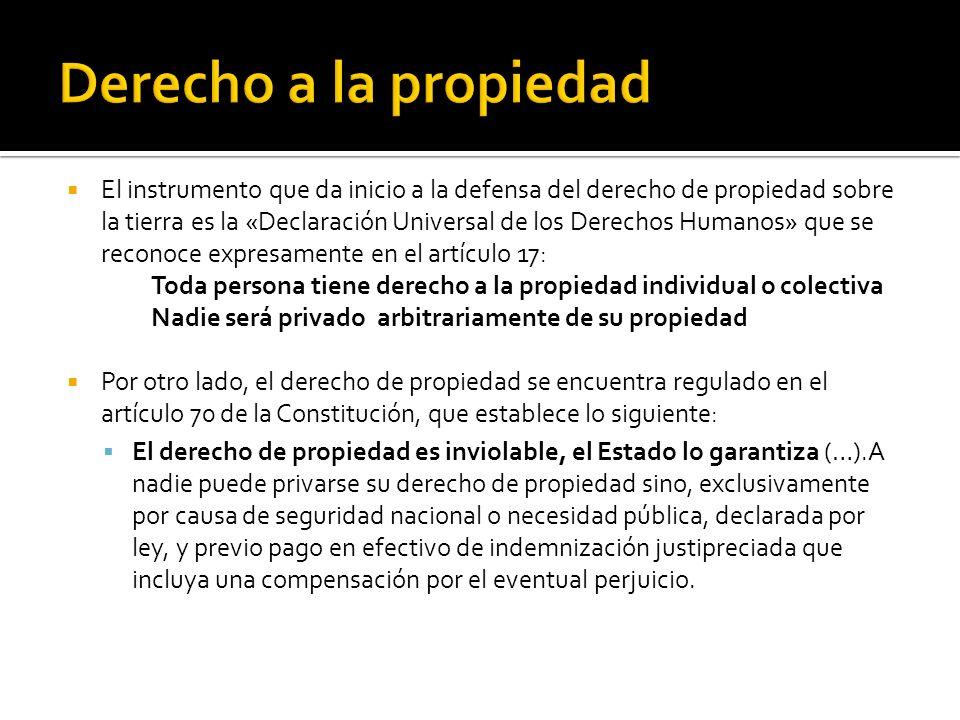 El instrumento que da inicio a la defensa del derecho de propiedad sobre la tierra es la «Declaración Universal de los Derechos Humanos» que se reconoce expresamente en el artículo 17: Toda persona tiene derecho a la propiedad individual o colectiva Nadie será privado arbitrariamente de su propiedad Por otro lado, el derecho de propiedad se encuentra regulado en el artículo 70 de la Constitución, que establece lo siguiente: El derecho de propiedad es inviolable, el Estado lo garantiza (…).A nadie puede privarse su derecho de propiedad sino, exclusivamente por causa de seguridad nacional o necesidad pública, declarada por ley, y previo pago en efectivo de indemnización justipreciada que incluya una compensación por el eventual perjuicio.