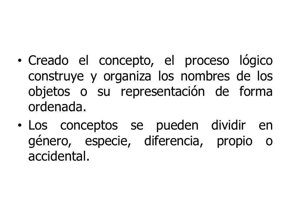 Creado el concepto, el proceso lógico construye y organiza los nombres de los objetos o su representación de forma ordenada. Los conceptos se pueden d