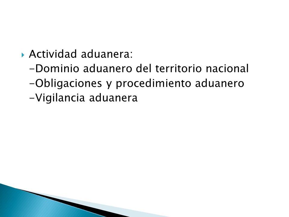 Derecho aduanero, ¿público o privado.