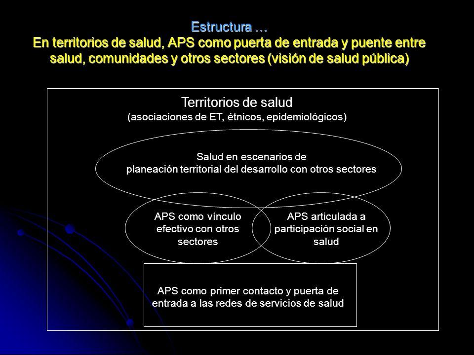 Estructura … En territorios de salud, APS como puerta de entrada y puente entre salud, comunidades y otros sectores (visión de salud pública) Territor