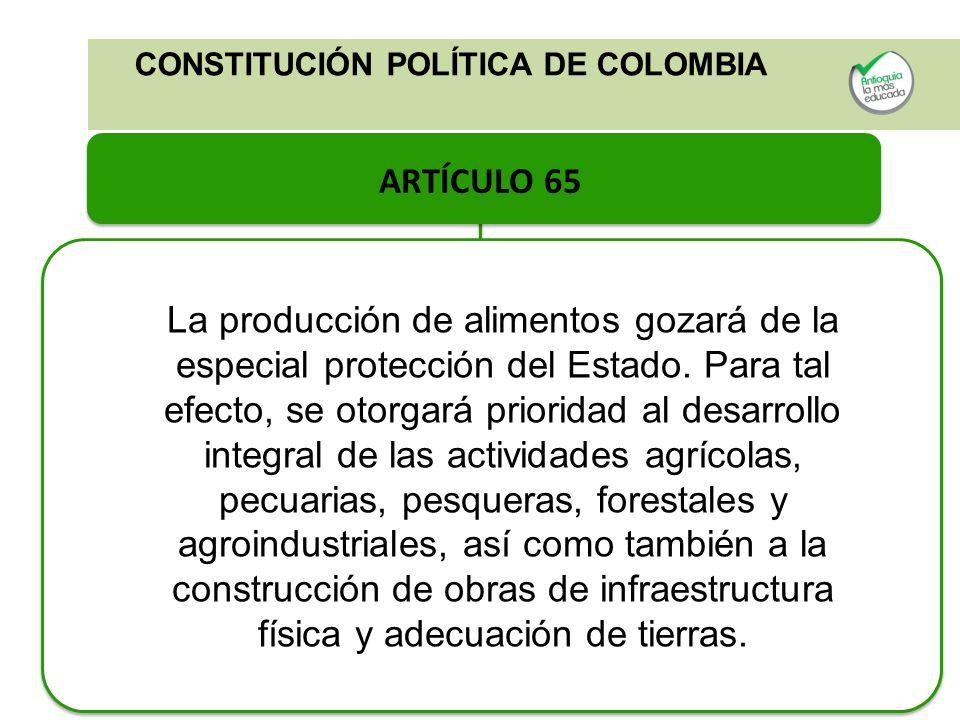 CONSTITUCIÓN POLÍTICA DE COLOMBIA ARTÍCULO 65 La producción de alimentos gozará de la especial protección del Estado. Para tal efecto, se otorgará pri
