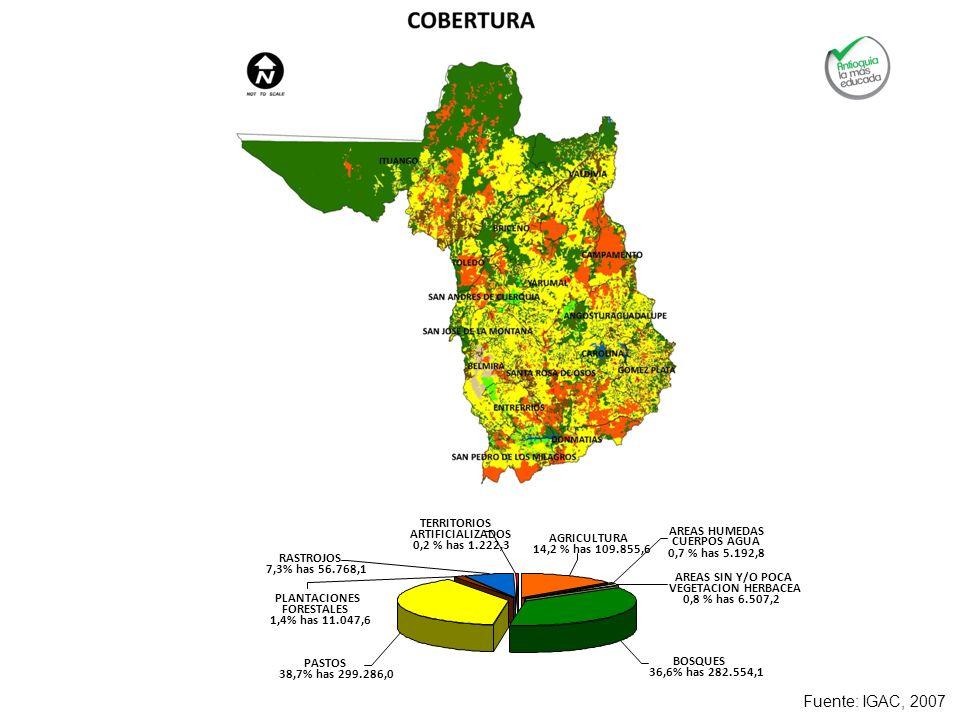 Fuente: IGAC, 2007 PASTOS 38,7% has 299.286,0 PLANTACIONES FORESTALES 1,4% has 11.047,6 RASTROJOS 7,3% has 56.768,1 TERRITORIOS ARTIFICIALIZADOS 0,2 %