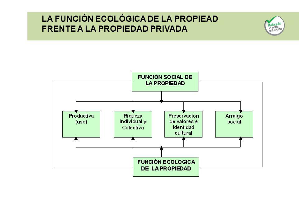 LA FUNCIÓN ECOLÓGICA DE LA PROPIEAD FRENTE A LA PROPIEDAD PRIVADA