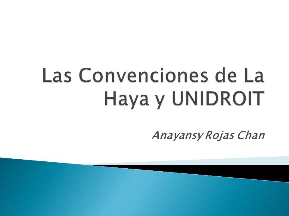 Conferencia de La Haya de Derecho Internacional Privado Convención sobre la ley aplicable a ciertos derechos sobre valores depositados en un intermediario.