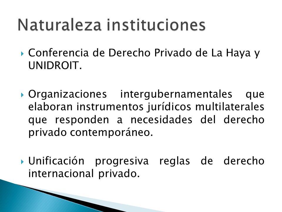 Conferencia de Derecho Privado de La Haya y UNIDROIT. Organizaciones intergubernamentales que elaboran instrumentos jurídicos multilaterales que respo