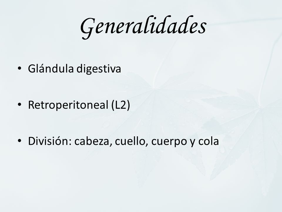 Generalidades Glándula digestiva Retroperitoneal (L2) División: cabeza, cuello, cuerpo y cola