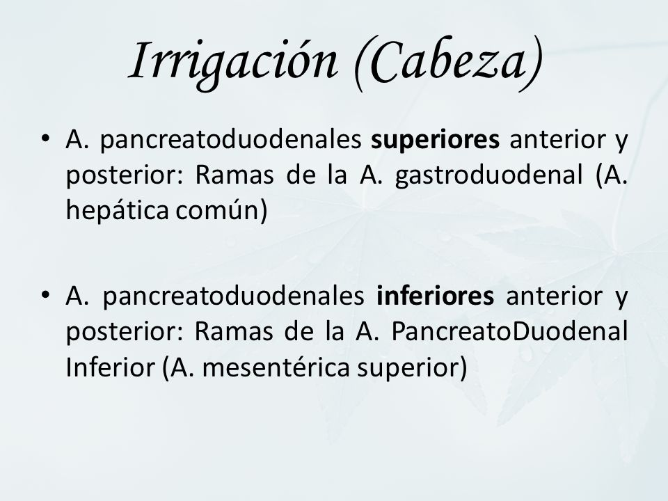A. pancreatoduodenales superiores anterior y posterior: Ramas de la A. gastroduodenal (A. hepática común) A. pancreatoduodenales inferiores anterior y