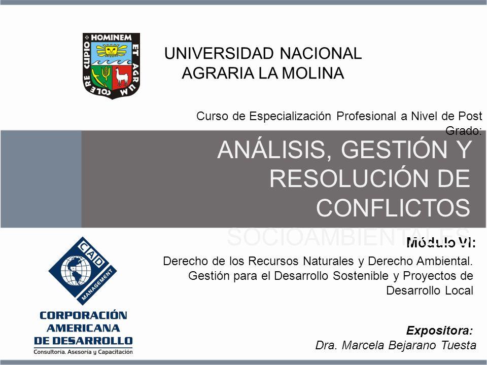 Derecho de los Recursos Naturales y Derecho Ambiental. Gestión para el Desarrollo Sostenible y Proyectos de Desarrollo Local Módulo VI: Curso de Espec