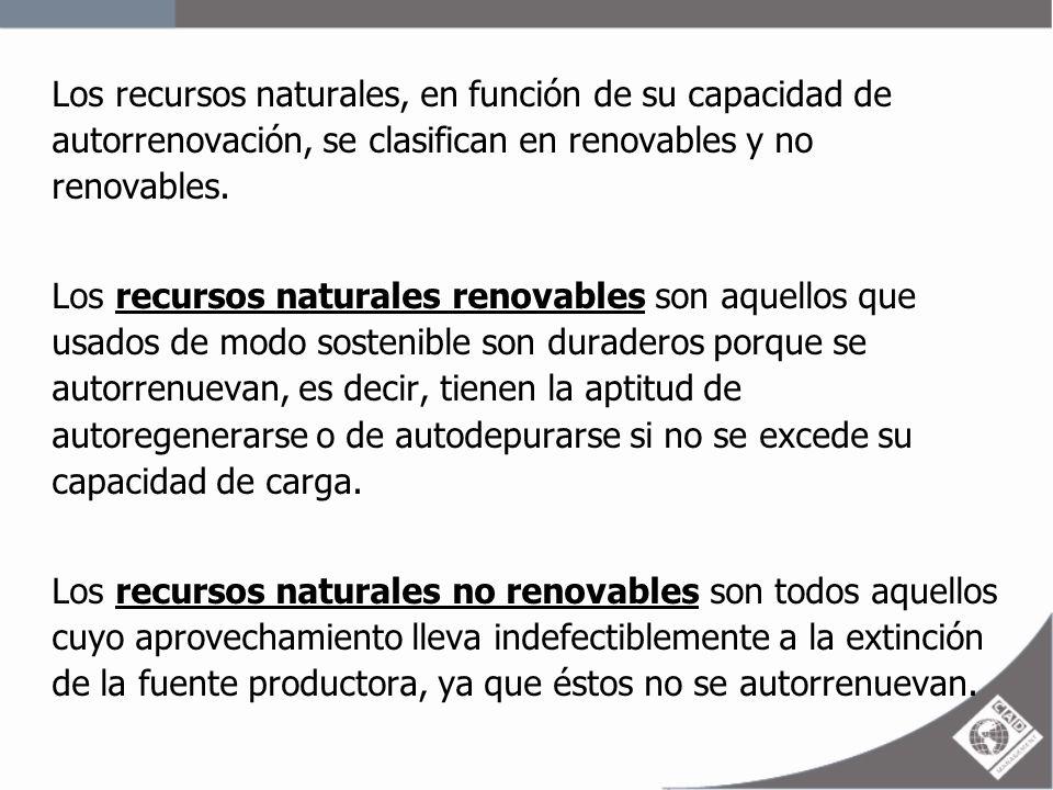 Los recursos naturales, en función de su capacidad de autorrenovación, se clasifican en renovables y no renovables. Los recursos naturales renovables