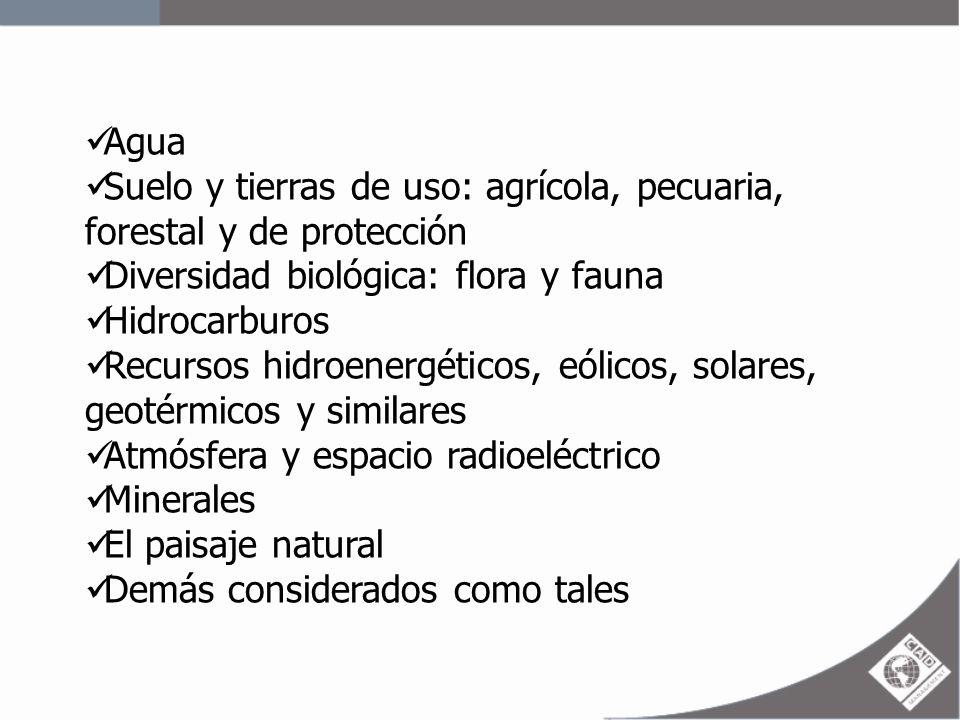 Agua Suelo y tierras de uso: agrícola, pecuaria, forestal y de protección Diversidad biológica: flora y fauna Hidrocarburos Recursos hidroenergéticos,