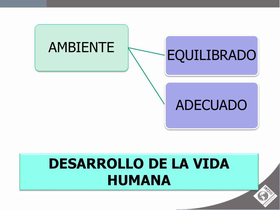 AMBIENTE EQUILIBRADO ADECUADO DESARROLLO DE LA VIDA HUMANA