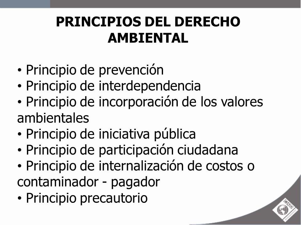 PRINCIPIOS DEL DERECHO AMBIENTAL Principio de prevención Principio de interdependencia Principio de incorporación de los valores ambientales Principio