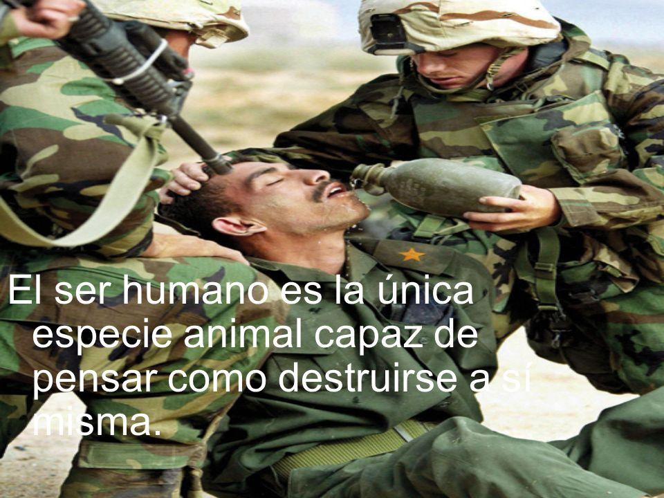 El ser humano es la única especie animal capaz de pensar como destruirse a sí misma.