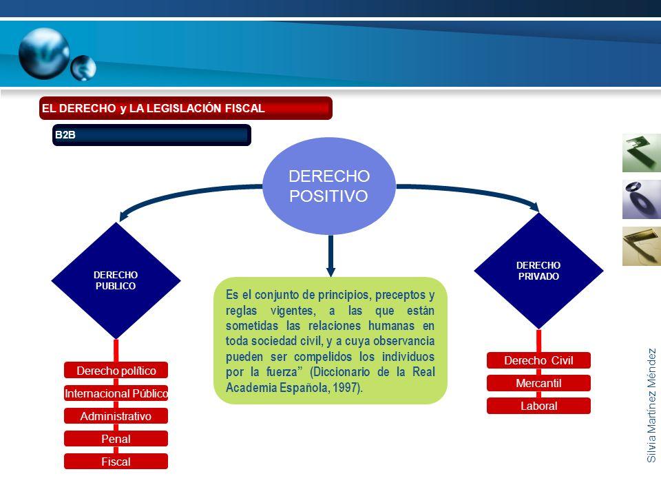 Silvia Martínez Méndez EL DERECHO y LA LEGISLACIÓN FISCAL B2B DERECHO PUBLICO Derecho político Internacional Público Administrativo Penal Fiscal Derec