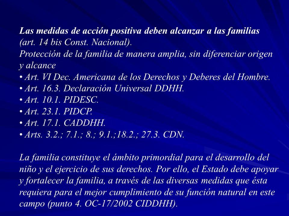 Las medidas de acción positiva deben alcanzar a las familias (art. 14 bis Const. Nacional). Protección de la familia de manera amplia, sin diferenciar