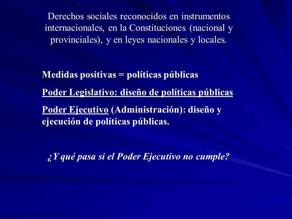Derechos sociales reconocidos en instrumentos internacionales, en la Constituciones (nacional y provinciales), y en leyes nacionales y locales. Medida
