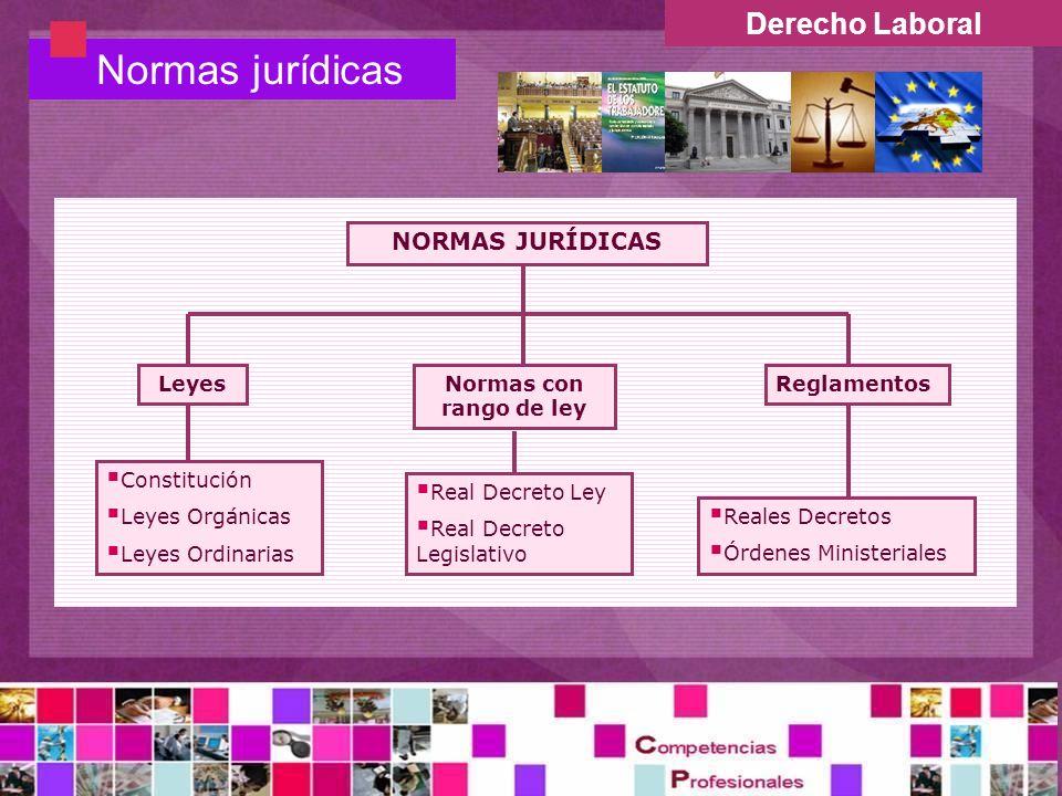 Derecho Laboral Normas jurídicas NORMAS JURÍDICAS Normas con rango de ley Reales Decretos Órdenes Ministeriales LeyesReglamentos Real Decreto Ley Real Decreto Legislativo Constitución Leyes Orgánicas Leyes Ordinarias