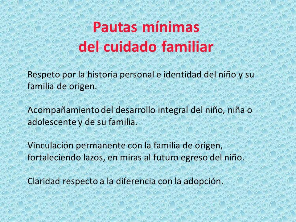 Pautas mínimas del cuidado familiar Respeto por la historia personal e identidad del niño y su familia de origen. Acompañamiento del desarrollo integr