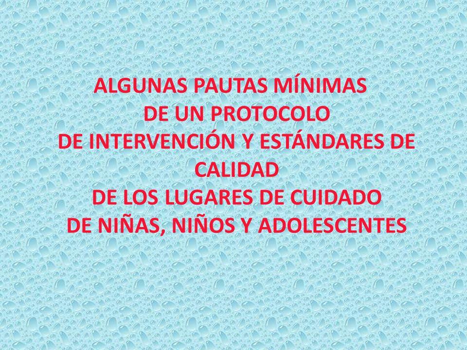 ALGUNAS PAUTAS MÍNIMAS DE UN PROTOCOLO DE INTERVENCIÓN Y ESTÁNDARES DE CALIDAD DE LOS LUGARES DE CUIDADO DE NIÑAS, NIÑOS Y ADOLESCENTES