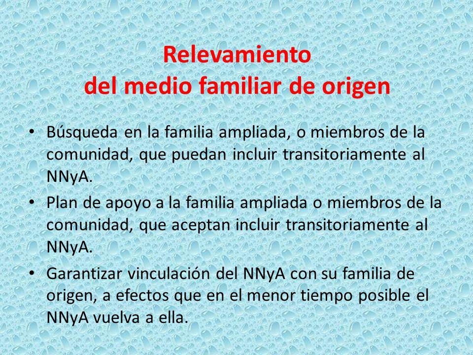 Relevamiento del medio familiar de origen Búsqueda en la familia ampliada, o miembros de la comunidad, que puedan incluir transitoriamente al NNyA. Pl