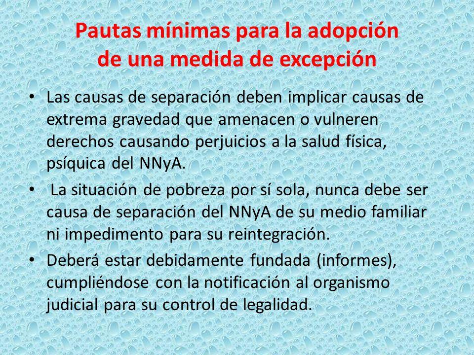 Pautas mínimas para la adopción de una medida de excepción Las causas de separación deben implicar causas de extrema gravedad que amenacen o vulneren