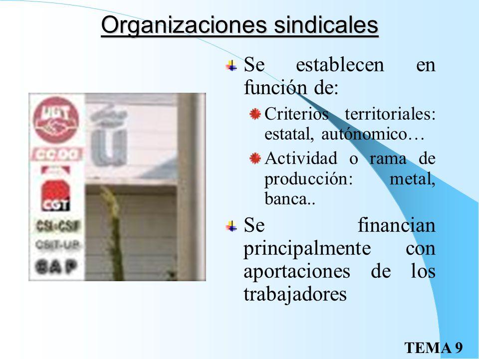 TEMA 9 Organizaciones sindicales Se establecen en función de: Criterios territoriales: estatal, autónomico… Actividad o rama de producción: metal, banca..