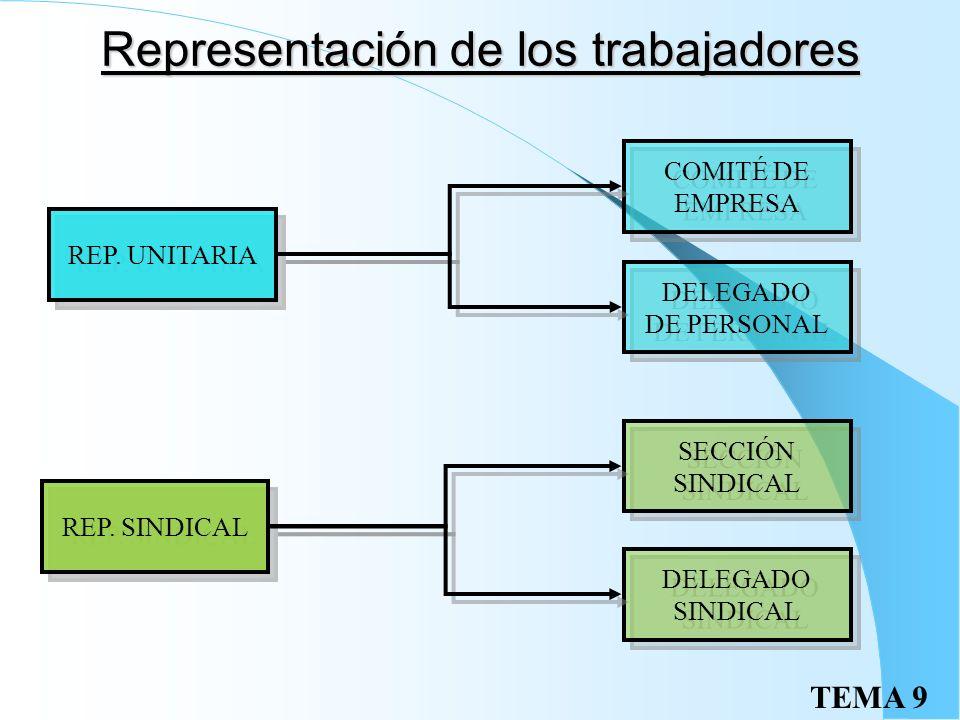 TEMA 9 Organizaciones sindicales Se establecen en función de: Criterios territoriales: estatal, autónomico… Actividad o rama de producción: metal, ban