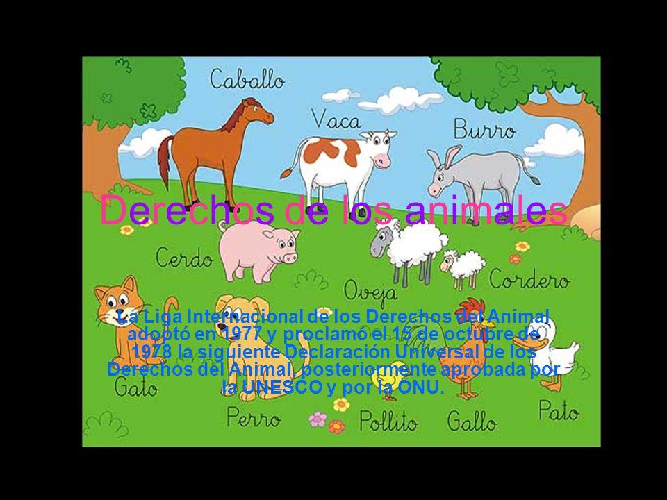 Derechos de los animales La Liga Internacional de los Derechos del Animal adoptó en 1977 y proclamó el 15 de octubre de 1978 la siguiente Declaración