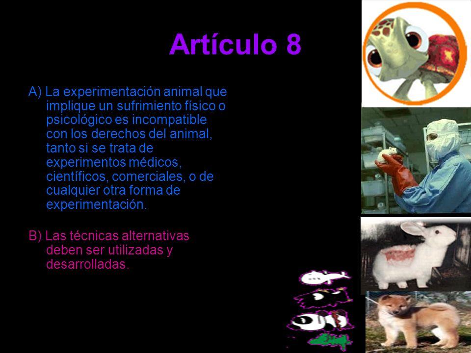 Artículo 8 A) La experimentación animal que implique un sufrimiento físico o psicológico es incompatible con los derechos del animal, tanto si se trat