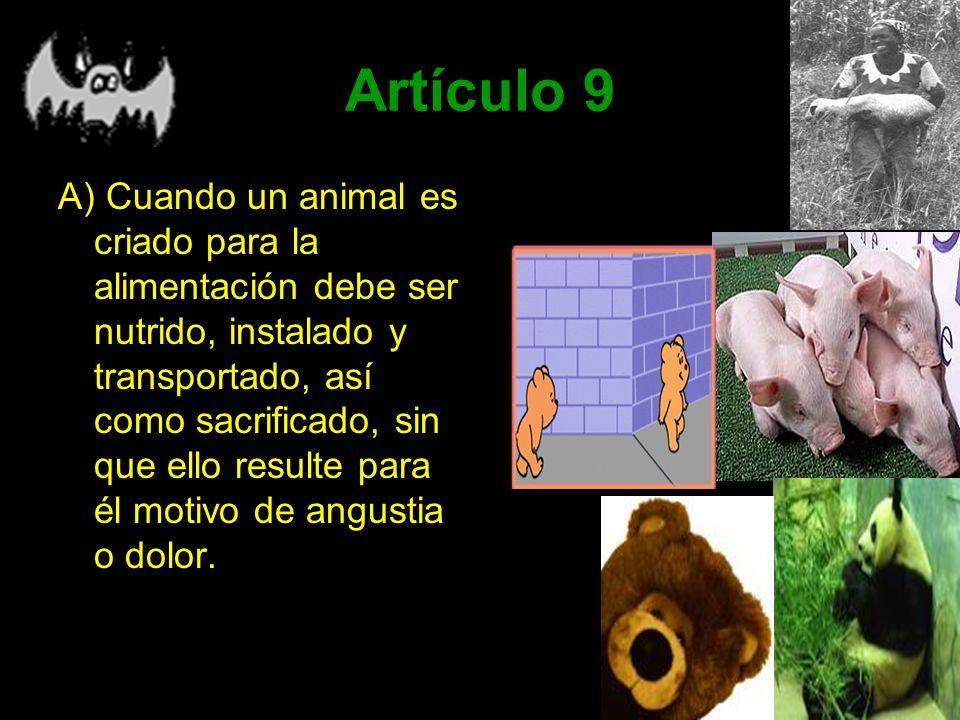 Artículo 9 A) Cuando un animal es criado para la alimentación debe ser nutrido, instalado y transportado, así como sacrificado, sin que ello resulte p