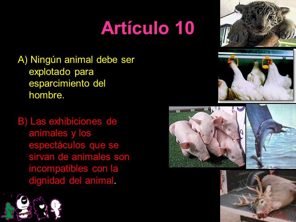 Artículo 10 A) Ningún animal debe ser explotado para esparcimiento del hombre. B) Las exhibiciones de animales y los espectáculos que se sirvan de ani