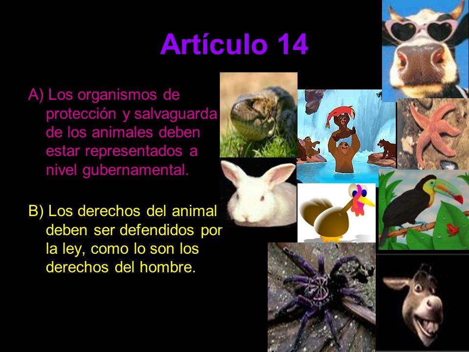 Artículo 14 A) Los organismos de protección y salvaguarda de los animales deben estar representados a nivel gubernamental. B) Los derechos del animal
