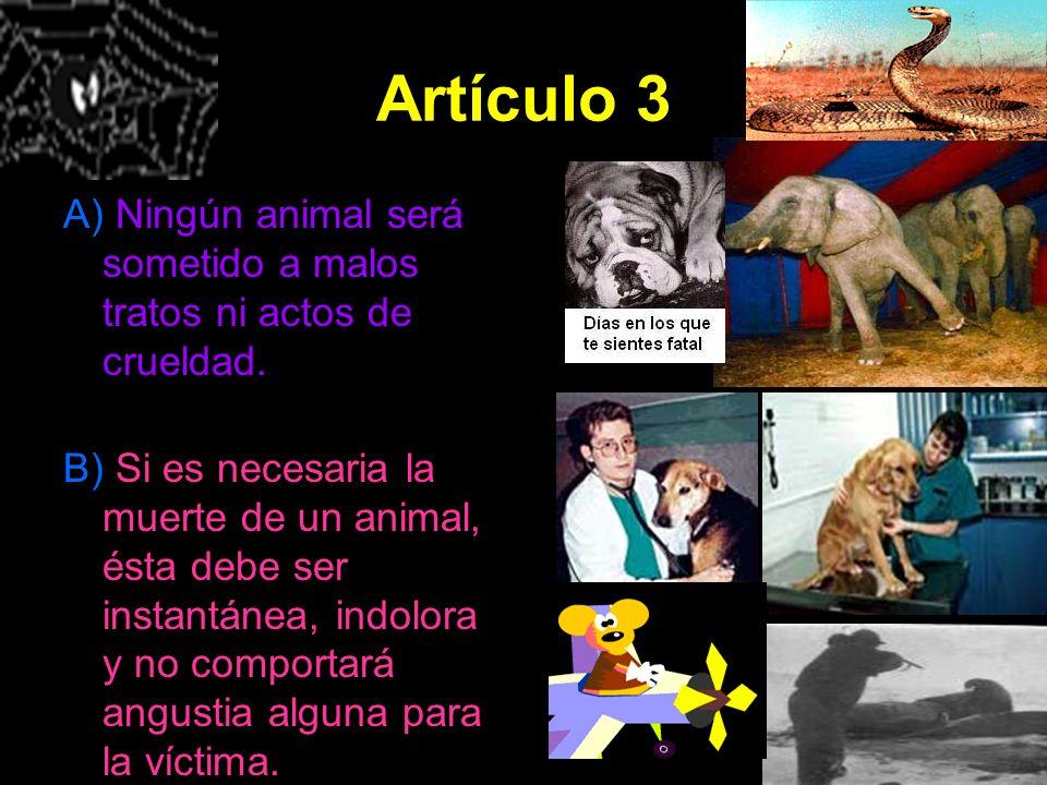 Artículo 3 A) Ningún animal será sometido a malos tratos ni actos de crueldad. B) Si es necesaria la muerte de un animal, ésta debe ser instantánea, i