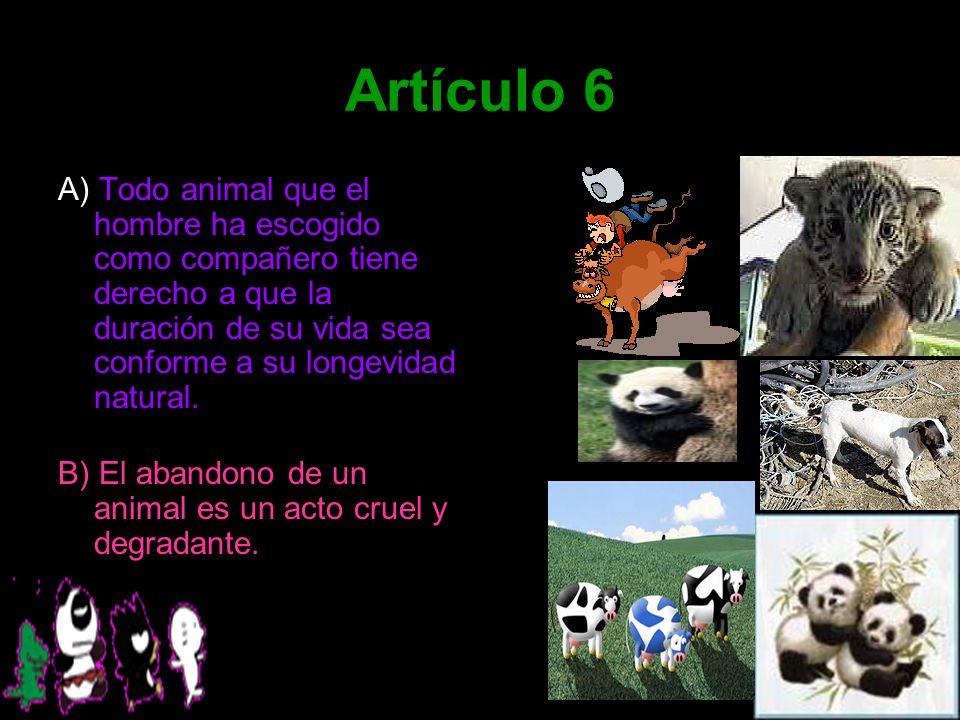 Artículo 6 A) Todo animal que el hombre ha escogido como compañero tiene derecho a que la duración de su vida sea conforme a su longevidad natural. B)